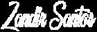 Zandir-Santos-filmmaker-webdesigner-logo